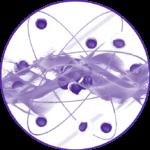 Quantum-research-3-64c